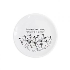Kitties Children`s plate